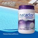 1 - Pastillas de cloro multiaccion 200g